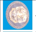 Св. комн. круг Хром IP20 Gerhord G4 2013F/1CR .D=180mm светильник